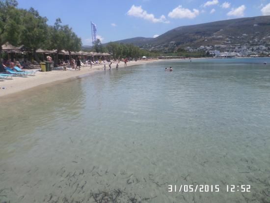 Livadia, กรีซ: λιβαδια