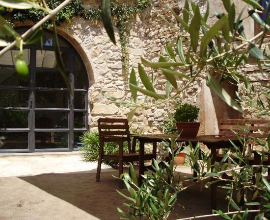 Casa Miret: Jardín