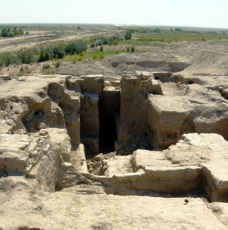 Bukhara Province, Usbekistan: Едем в Пойкенд.