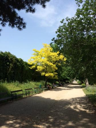 Botanischer Garten (Botanical Garden of the University of Vienna) : Красота