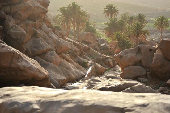 Climbing-Fuerteventura