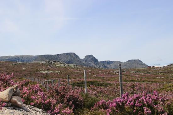 Setubal District, Portugal : Mountain Serra da Estrela