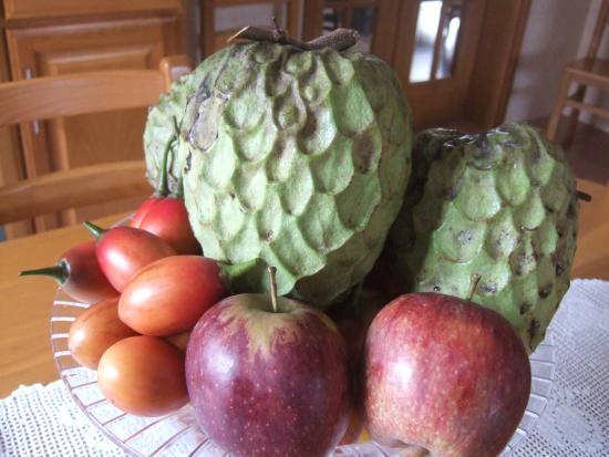 Fruta da Quinta dos Frutos