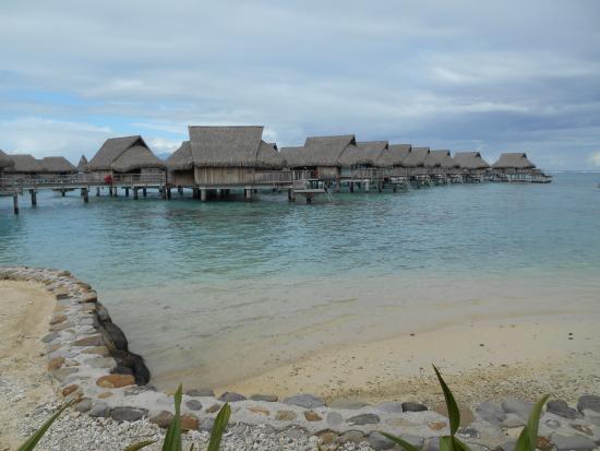 Sofitel Moorea Ia Ora Beach Resort : Panorama dalla camera