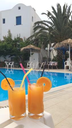 Hotel Kalma: Oranges fraîches pressées par Victor au bar de la piscine.
