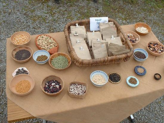 Scarriff, Ireland: Seed Table