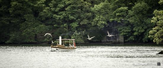 Bowness-on-Windermere, UK: Steamer