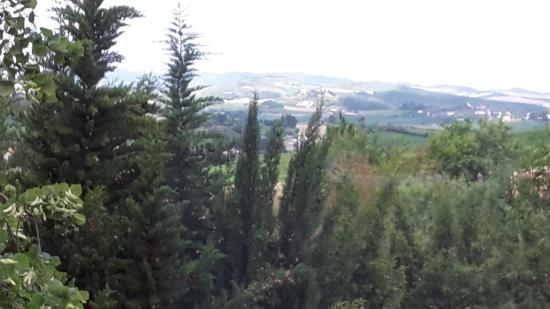 B & B in Limoux at Domaine St George: early morning view