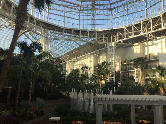 Opryland Hotel Gardens Photo