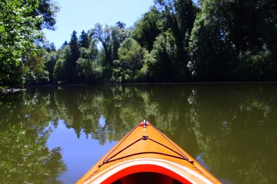 Kayaking the Tualatin river
