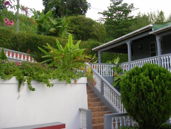 Marigot, Dominica: Classique International grounds