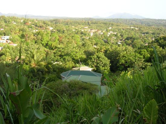 Marigot, Dominica: View above Classique International