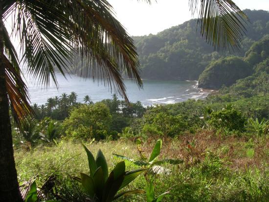 Marigot, Dominica: countryside