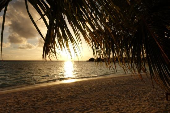 Vakarufalhi Island Resort : Sonnenuntergang im Nord-Westen der Insel.
