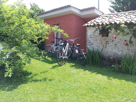 Terre di Bea B&B: gita in bici