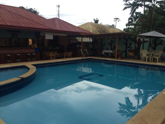 Citadel Bed and Breakfast: Pool area
