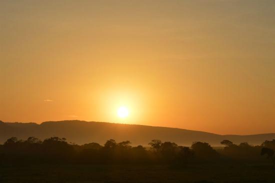 Losokwan Camp Maasai Mara: View at the camp