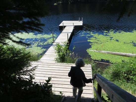 Денман-Айленд, Канада: Graham Lake