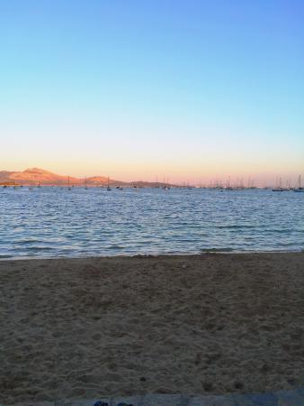 Little Italy Puerto Pollensa : At least the view was ok!