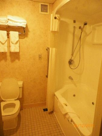 Riverview Inn & Suites: bathroom