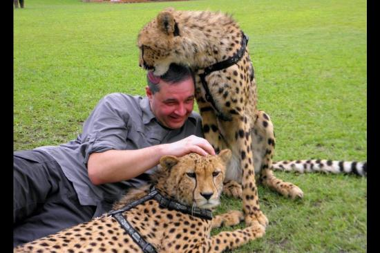Chaminuka Game Reserve: Licked by a cheetah