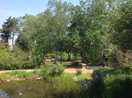 Trochu Arboretum & Gardens: A quiet spot to sit.
