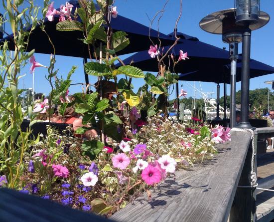 Captain Kidd Restaurant : Spring Flowers