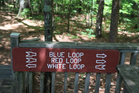 Pickett's Mill Battlefield: Loop trail signs - Your choices
