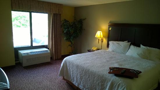 Hampton Inn Bennington: Bedroom area