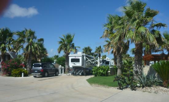 Gulf Waters Beach Front RV Resort: Our Camp Site
