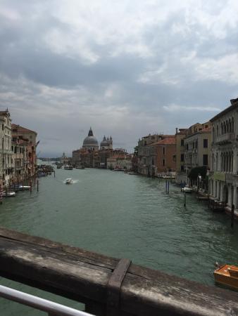 Venezia Lines: photo0.jpg