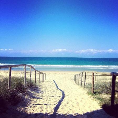 Coolangatta / Kirra Beach YHA: Bilinga Beach.