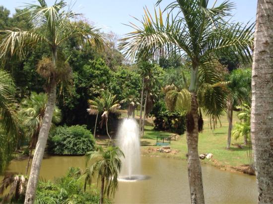 Botanical Garden in Rio Piedras