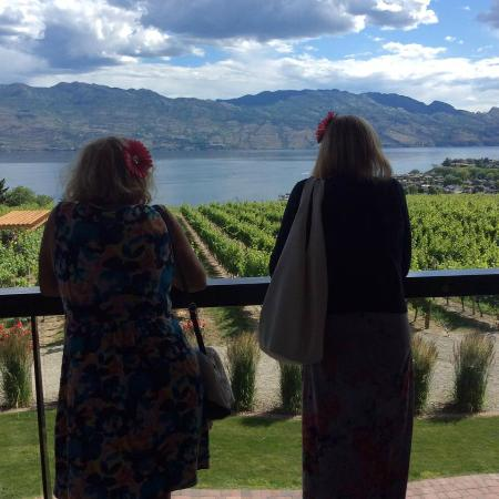 West Kelowna, Canadá: Stunning view at Quails Gate Winery