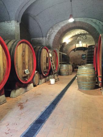 Tenuta Valdipiatta: Aging barrels