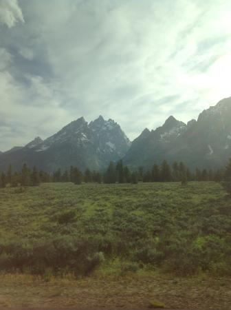 Teton National Forest: Природа