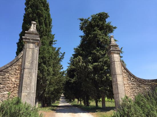 Villa Buoninsegna : Entrance