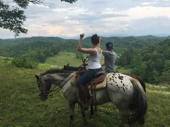Smoky Mountain Trail Rides and Bison Farm