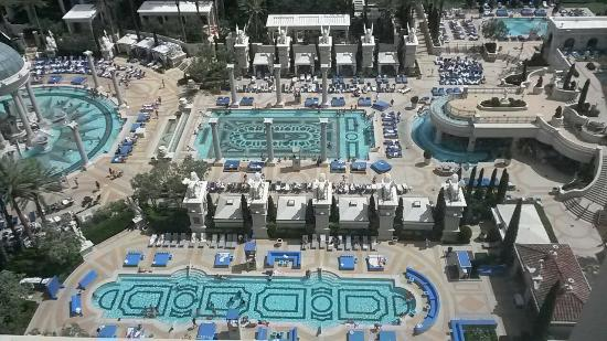 Pool picture of caesars palace las vegas tripadvisor for Caesars swimming pool