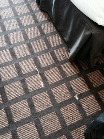 Microtel Inn & Suites by Wyndham Perry: Fix the carpet !