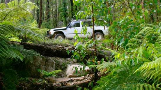 Dargo, أستراليا: 4WD along the Wonnangatta Valley Four Wheel Drive
