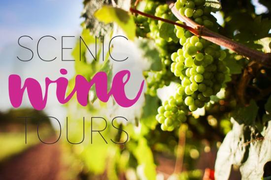 Scenic Wine Tours