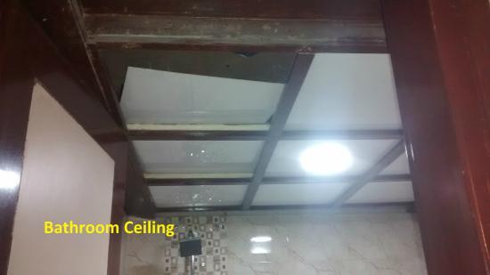 Star Regency : Bathroom Ceiling