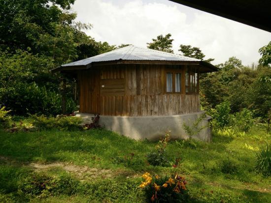 Yangsum Heritage Farm: How our cottage looks like :)