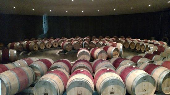 The Boxwood Winery