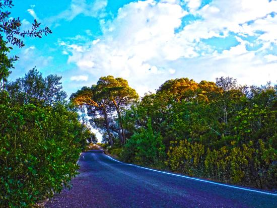 CountrySide Pony Algarve