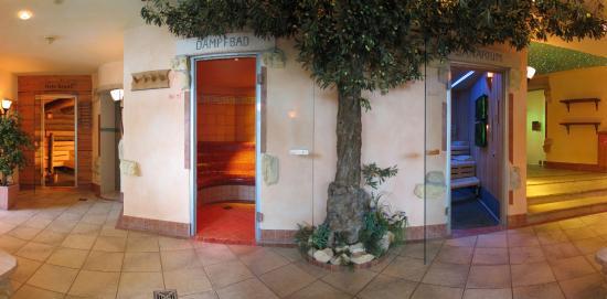 Sterne Hotel Expedia Lauterbad