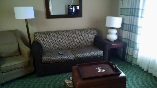 Homewood Suites by Hilton Nashville Brentwood: Room 250 needs love.