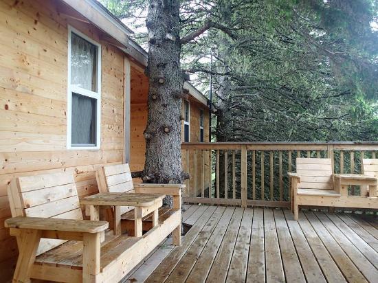Miramichi Treehouse & Camping Adventures