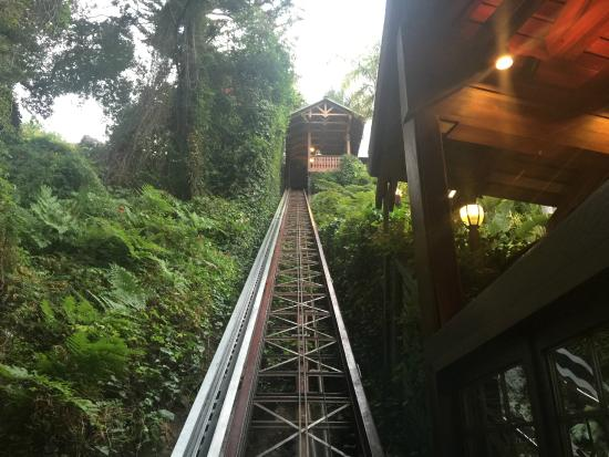 The cable car coming down - Picture of Shadowbrook, Capitola ...